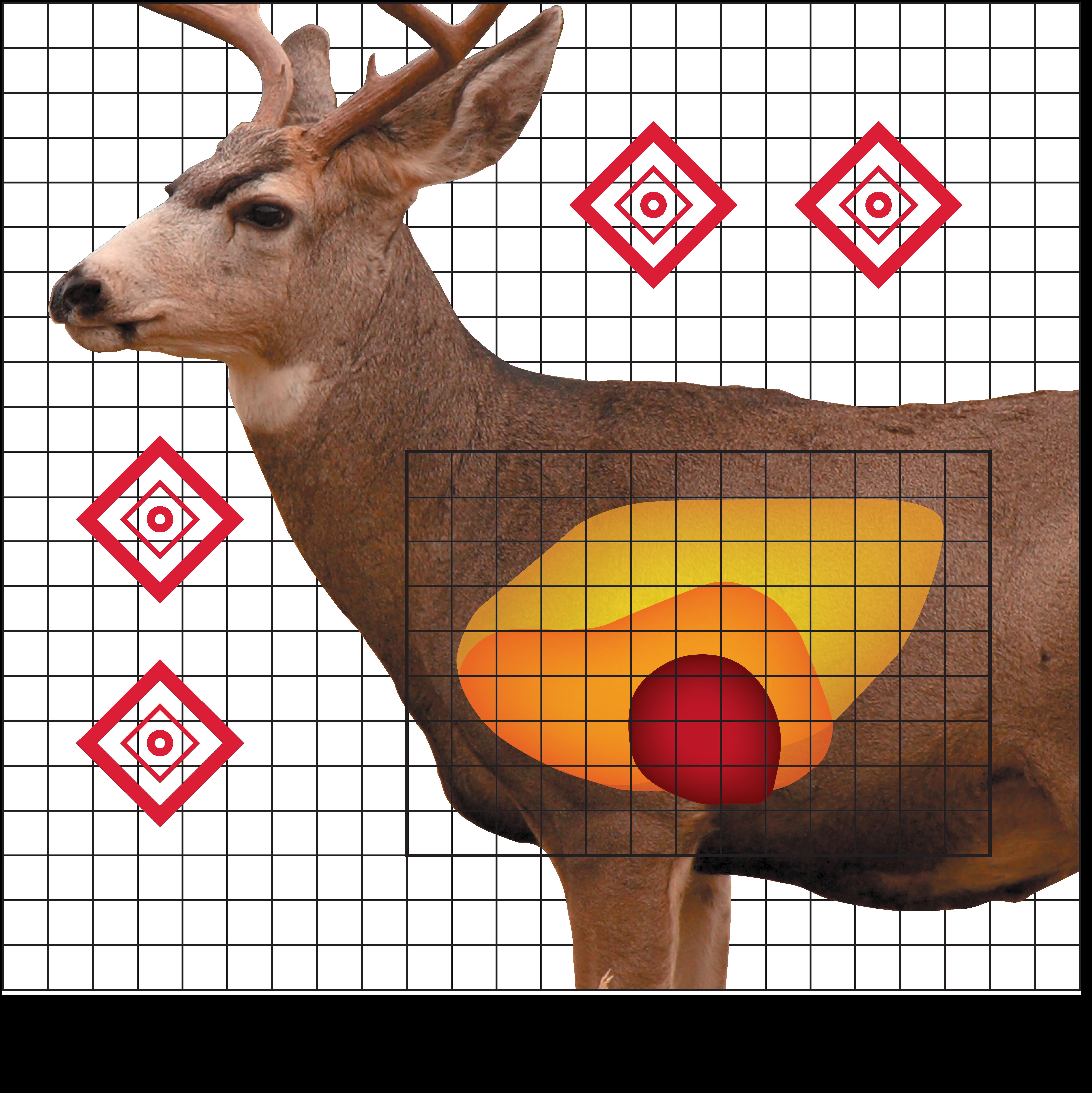photo regarding Deer Vitals Target Printable titled Lifetime Sizing Deer Aim Printable - The Easiest Illustrations or photos Of Deer